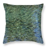 Kathleen River Keflections Throw Pillow