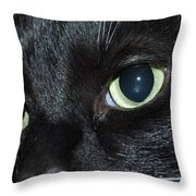 Katy - The Eyes Have It Throw Pillow
