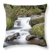 Kauai Flow Throw Pillow