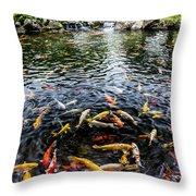 Kauai Koi Pond Throw Pillow by Darcy Michaelchuk