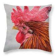 Kauai Rooster Throw Pillow