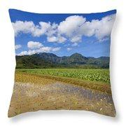 Kauai Wet Taro Farm Throw Pillow