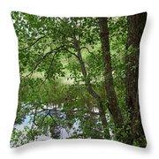 Kaulanen Lake Throw Pillow