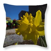 Kayak Launch Daffodil Cambridge Ma Throw Pillow