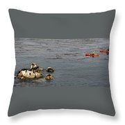 Kayakers And Seal Lions Throw Pillow