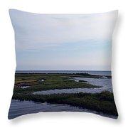 Keaton Beach Wetland Throw Pillow