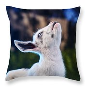 Keep Calm And Hold Your Head Up Throw Pillow