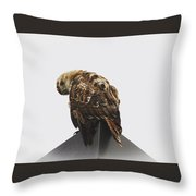 Keep Your Eyes Off The Goods Throw Pillow