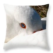 Keeping A Watchful Eye Throw Pillow