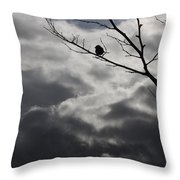Keeping Above The Storm Throw Pillow