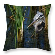 Keeping An Eye Out For Fish Throw Pillow