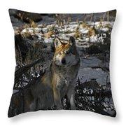 Keeping Watch Throw Pillow
