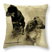 Keeping Watch In Sepia Tone Throw Pillow