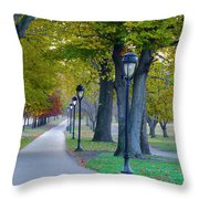 Kelly Drive In Autumn Throw Pillow