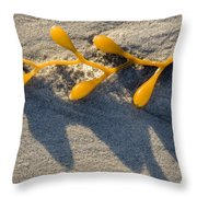 Kelp Washed Onto The Sand At Carmel Throw Pillow