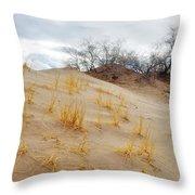 Kelso Dune Slopes Throw Pillow