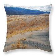 Kelso Dunes Winter Throw Pillow