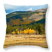 Kenosha Pass Aspens 4 Throw Pillow