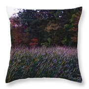 Kensington 10  Throw Pillow