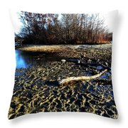 Kensington 4 Throw Pillow