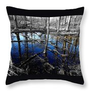Kensington 6 Throw Pillow