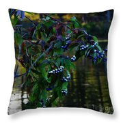 Kensington Throw Pillow