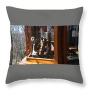 Kentuck Knob Frank Lloyd Wright Throw Pillow