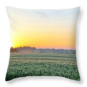 Kentucky Wheat Crop Throw Pillow