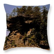 Kentucky Wonder Throw Pillow