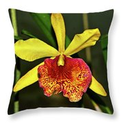 Keowee Newberry Orchid 001 Throw Pillow