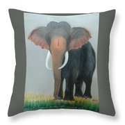 Kerala Elephant Throw Pillow