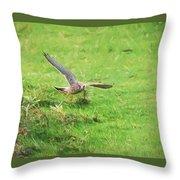 Kestrel Landing Throw Pillow