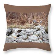 Kestrel With Prey Throw Pillow