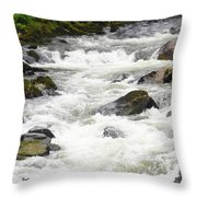 Ketchikan Creek Of Creek Street Detail Throw Pillow