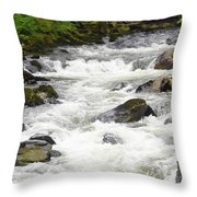 Ketchikan Creek Of Creek Street Fame Throw Pillow