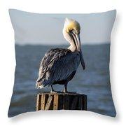 Key Largo Florida Yellow Headed Pelican Throw Pillow