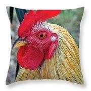 Key West Chicken Throw Pillow