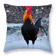 Key West Cock Throw Pillow