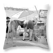 Key West Dane Throw Pillow