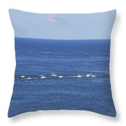 Key West Fishing Throw Pillow