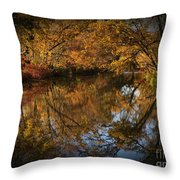 Keyhole Reflections Throw Pillow