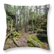 Keyhole Side Trail Throw Pillow