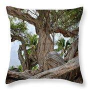 Kiawe Tree Throw Pillow