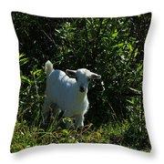 Kid Goat On A Farm Throw Pillow