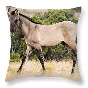 Kiger Colt Throw Pillow