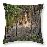 Kill Creek 8283 Throw Pillow