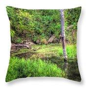 Kill Creek 8388 Throw Pillow