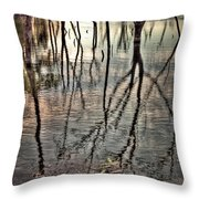 Kill Creek 8394 Throw Pillow