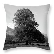Killarney National Park, County Kerry, Ireland Throw Pillow