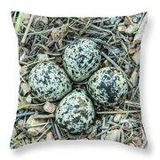 Killdeer Eggs Throw Pillow